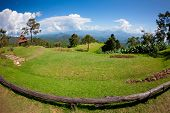 Green Grass With Mountain