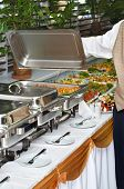 Chafing Dish Heater With Food