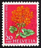Postage stamp Switzerland 1963 Pelargonium, Flowering Plant