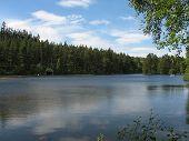 Scottish Loch Fishing