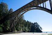 Frederick W Panhorse Bridge On A Sunny Day