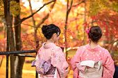 KYOTO - NOVEMBER 19: Women in traditional attire view fall foliage at Eikando Temple November 19, 2012 in Kyoto, JP. Viewing the fall foliage is a cultural pastime in Japan dating from antiquity.