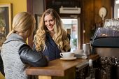 Happy female friends conversing by counter in coffeeshop
