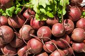 Pile Of Beets