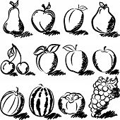 pic of temperance  - Temperate fruits sketch drawing vector set on white - JPG