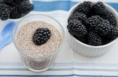 stock photo of cinnamon  - Chia Pudding with blackberries and cinnamon for breakfast - JPG