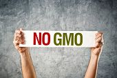 foto of biotech  - No GMO - JPG