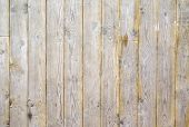 wood background with a natural patterns