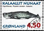 Cachalot Stamp