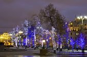Moscow, Trees In Christmas Illumination