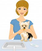 Illustration of a Woman Brushing the Teeth of Her Pet Dog