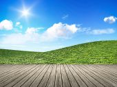 An image of a bright day nature background