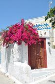 greek bungalow with pink bougainvillea, santorini island