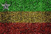 Burma Flag Color Grass Texture Background