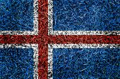 Norway Flag Color Grass Texture Background