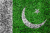 Pakistan Flag Color Grass Texture Background