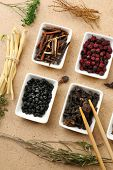 Traditional chinese herbal medicine ingredients, close-up