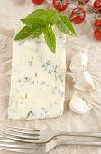 Gorgonzola Cheese On Kitchen Paper