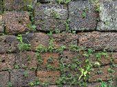Wall Detail At Angkor Thom