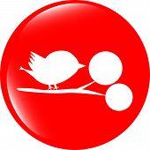 Bird Glossy Web Icons, App Button