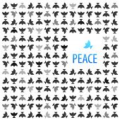 The idea for the poster - for peace. White dove surrounded by black birds.