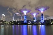 Gardens by the bay Supertree Grove and Singapore Flyer