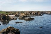 picture of mendocino  - A view of the coast of Fort Bragg in California - JPG