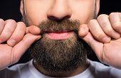 picture of beard  - Beard man - JPG