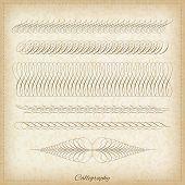 Set of calligraphy elemetns