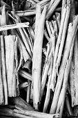 Pile Of Twigs B&w