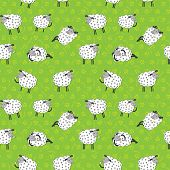 Seamless pattern with cartoon sheeps