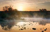 Fog over autumn river