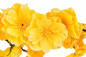 Artificial yellow flowers