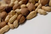 Heap Of Peanuts And Walnuts