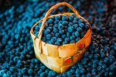 Fresh Fruit Organic Berry Blueberries In Wicker Basket