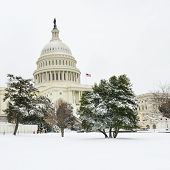 The Capitol in snow - Washington DC, United States of America