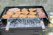 pic of chicken-wire  - Assorted  red meat on an outdoor grill - JPG