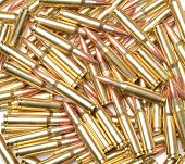 308 Winchester Cartridges.