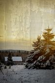 House in a wood during winter season at sunset.  Cross processed to look like and instant picture with texture.