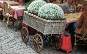 stock photo of antique wheelchair  - decorative flowers in a wheelchair at the table - JPG