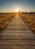 picture of prairie  - A beautiful sunset scene along a wood boardwalk with the boardwalk leading right into the setting sun - JPG