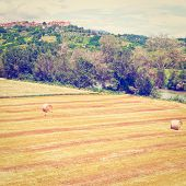 picture of hay bale  - Tuscany Landscape with Many Hay Bales on the Background of the Medieval City Instagram Effect - JPG