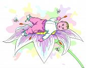 Baby On The Flower