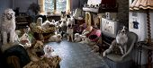 stock photo of dog-house  - Portrait of 24 dogs in a living room in front of a TV - JPG