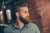 Постер, плакат: Advertising Barbershop Concept Profile Side Portrait Of Harsh Handsome Red Bearded Young Guy He Ha