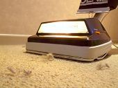 stock photo of dust bunny  - Close - JPG