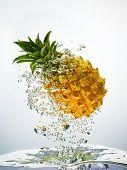 Pineapple splashing in water