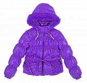 stock photo of jupe  - violet jacket - JPG