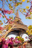 Eiffel Tower During Spring Time In Paris, France poster
