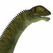 Mamenchisaurus Hochuanensis Dinosaur Head 3d Illustration - Mamenchisaurus Hochuanensis Was A Herbiv poster